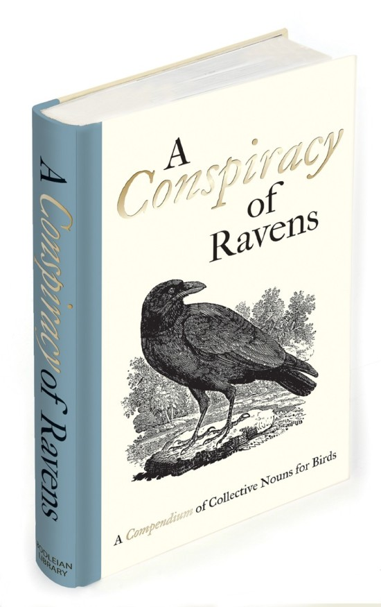 a conspiracy of ravens cover